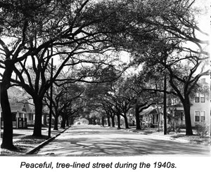 Tree-lined street during the 1940s